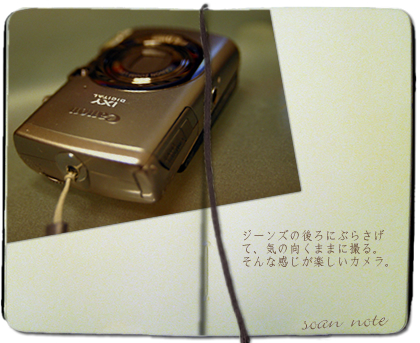 canon IXY 800is