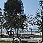 海辺の日曜日