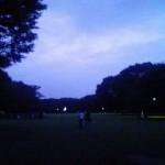 ピクニックat代々木公園